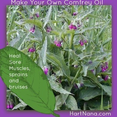 make comfrey oil
