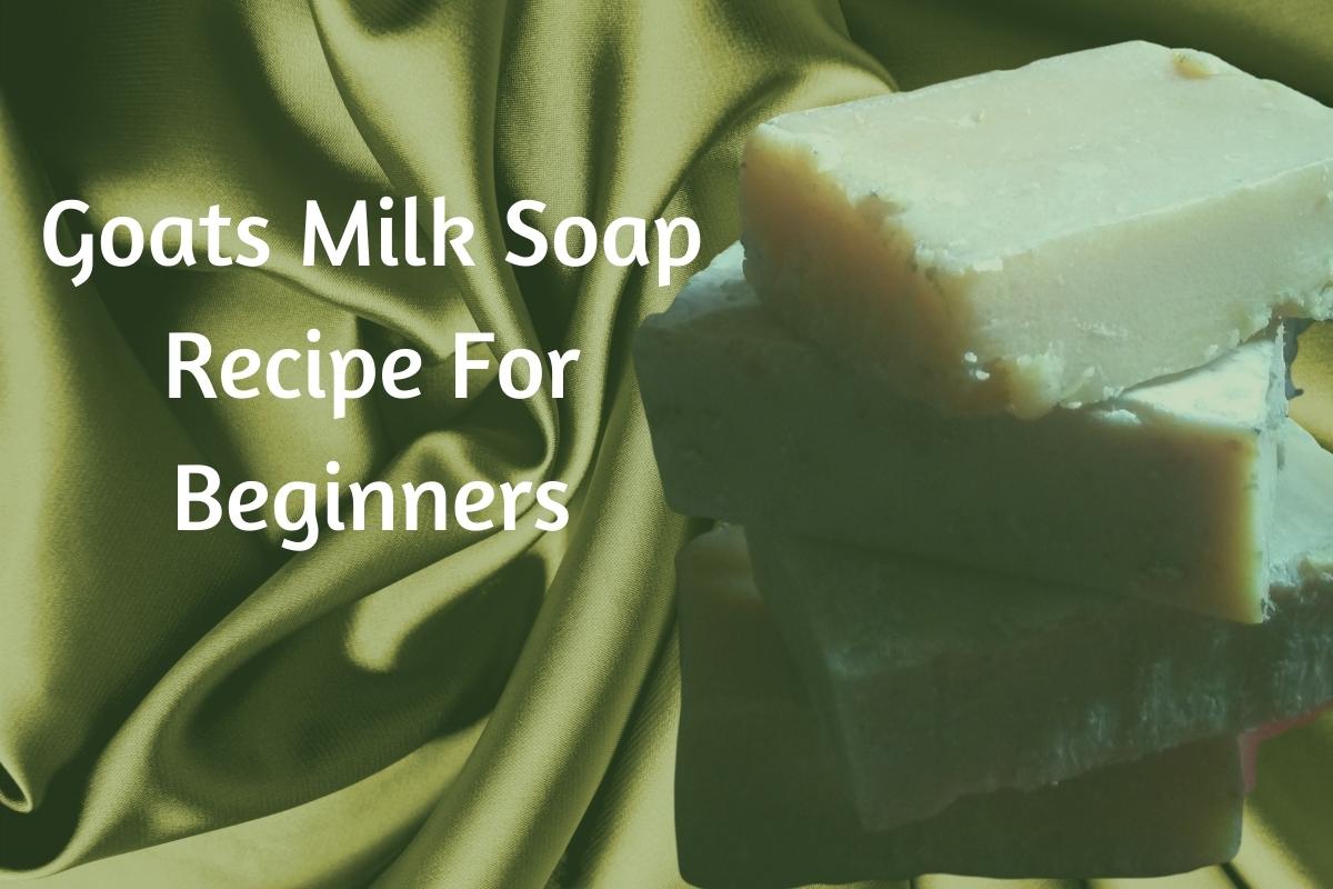 Goats Milk Soap Recipe For Beginners