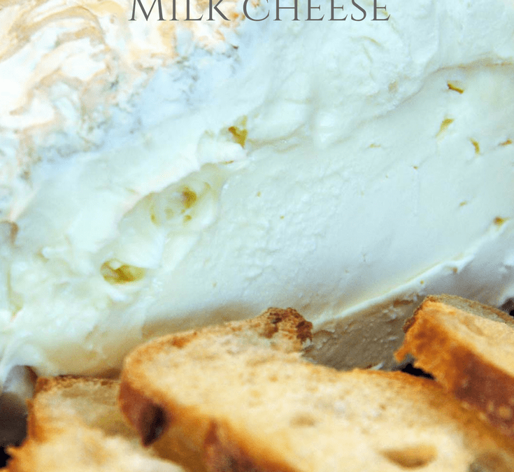 Goats Milk Cheese Recipes – How to Make Feta The Easy Way